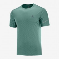 SALOMON - AGILE SS TEE M BALSAM GREEN - MEN